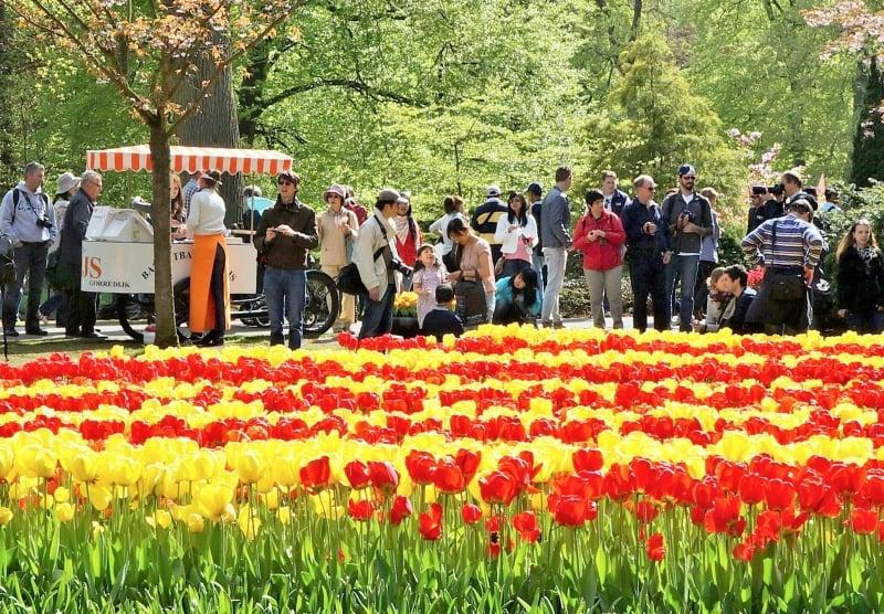 Informações sobre o Jardim de flores Keukenhof em Amsterdã