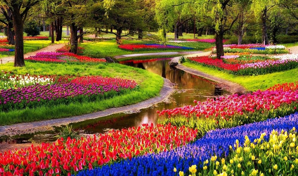 Jardim de flores Keukenhof em Amsterdã